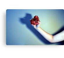 I've Got Your Heart in My Hand Canvas Print