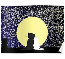 Abstract star's background with cats Poster