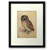 Albrecht Durer - The Little Owl 1506  Framed Print