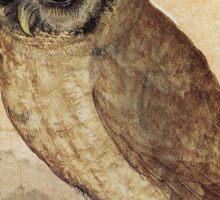 Albrecht Durer - The Little Owl 1506  Sticker