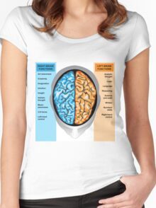 Human brain left and right functions Women's Fitted Scoop T-Shirt