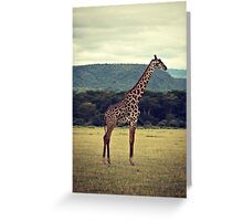 Stiff Sentinel ( Giraffe in Profile ) Greeting Card