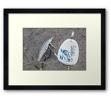 Minnow and Lure Framed Print