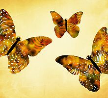 Butterfly Kisses by Christina Rollo