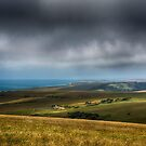 The Farm by Nigel Bangert