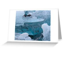Ice in the sealagoon Greeting Card