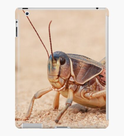 Grasshopper on Display iPad Case/Skin