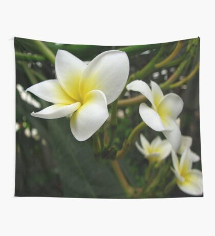 Closeup Frangipani with Natural Garden Background Wall Tapestry