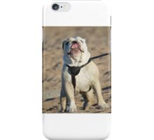Rude Dog iPhone Case/Skin