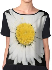Top View of a White Daisy Isolated on Black Chiffon Top