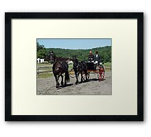 Tandem Team of Friesians Framed Print