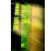 window of dreams Photographic Print