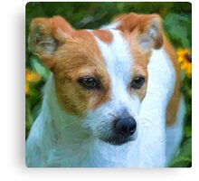 """""""Pepper"""" Cropped Canvas Print"""