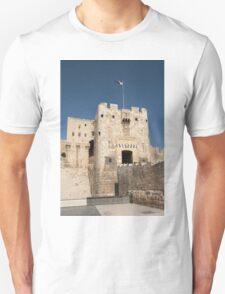 Citadel of Alepo T-Shirt