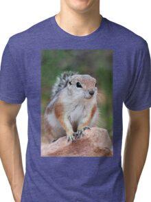 Antelope Ground Squirrel Tri-blend T-Shirt