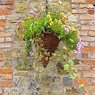 Wicker Basket On Brick by Fara