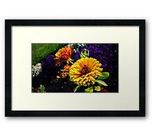 Garden Collection - Marigolds Framed Print