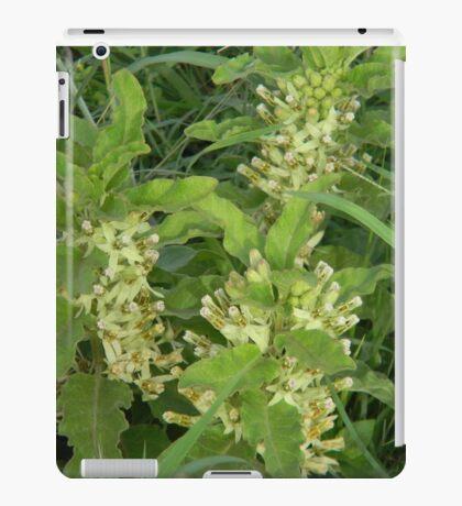 Primrose Milkweed iPad Case/Skin