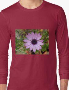 Raindrops on Petals - Pretty Pink Cape Daisy Long Sleeve T-Shirt