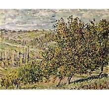 Claude Monet - Apple Blossom  Photographic Print