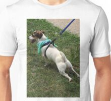 Doggie stretches Unisex T-Shirt