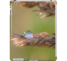 Impermanent iPad Case/Skin