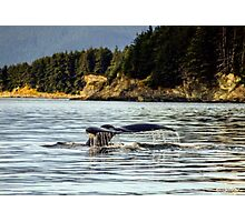 Whale fluke waterfall Photographic Print