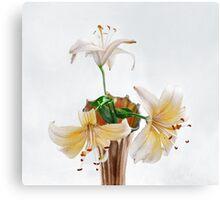 Three Pale Gold Lilies Still Life Canvas Print