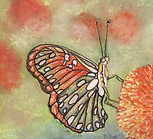 Butterfly On Orange Flower by MagsWilliamson