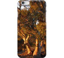 Sunrise at Umberatana Creek  iPhone Case/Skin