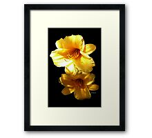 Sunshine Bright Daylilies Framed Print
