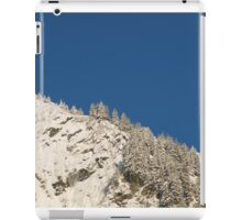 Mount Juneau Snow and Blue iPad Case/Skin
