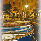 Limone / Lake Garda / Italy ~ 06 by Rachel Veser