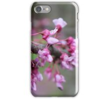 Real pretty pink flowers iPhone Case/Skin
