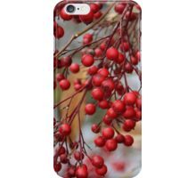 a red berry 4 u iPhone Case/Skin