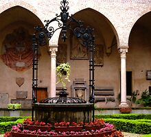 Padua Well by Cristy Hernandez