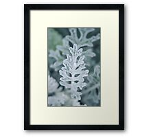 Frosty Pale Leaves Framed Print