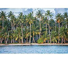 Tropical Palm Trees on Beach at Truk Lagoon Photographic Print
