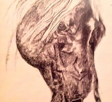 pony by radiantfrenetic