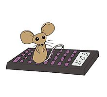 Mathematics Mouse Photographic Print