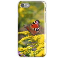 butterfly feeding iPhone Case/Skin
