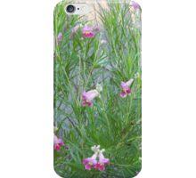 Desert Willow Shrub iPhone Case/Skin