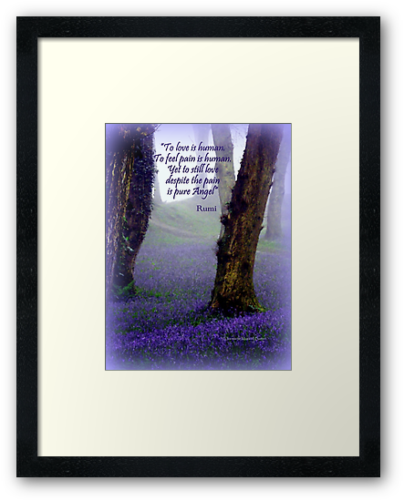 Bluebells and Rumi by Charmiene Maxwell-batten