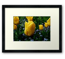It's raining on my parade! Framed Print
