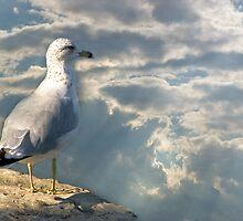 Edge Of Flight by sundawg7