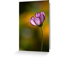 Cosmos on gold Greeting Card