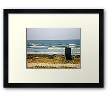 South Carolina Relaxing Framed Print