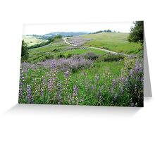 Bald Hills Road Lupines near Orick, CA Greeting Card