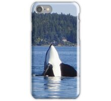 Curious Killer Whale iPhone Case/Skin