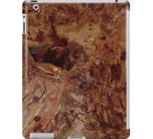 Lonely world iPad Case/Skin